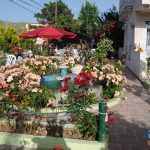 ozgur-motel-avsa (5)