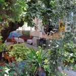bozyigit-evleri (12)
