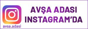 instagram-avsa